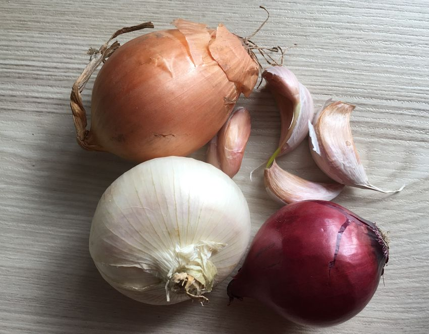 Is Garlic Safe For Dogs In Small Amounts