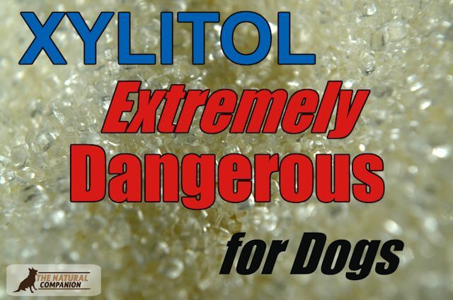 Xylitol Extremely Dangerous for Dogs